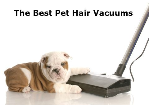 The Best Vacuum For Pet Hair